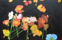 The Poppies of Palo Alto